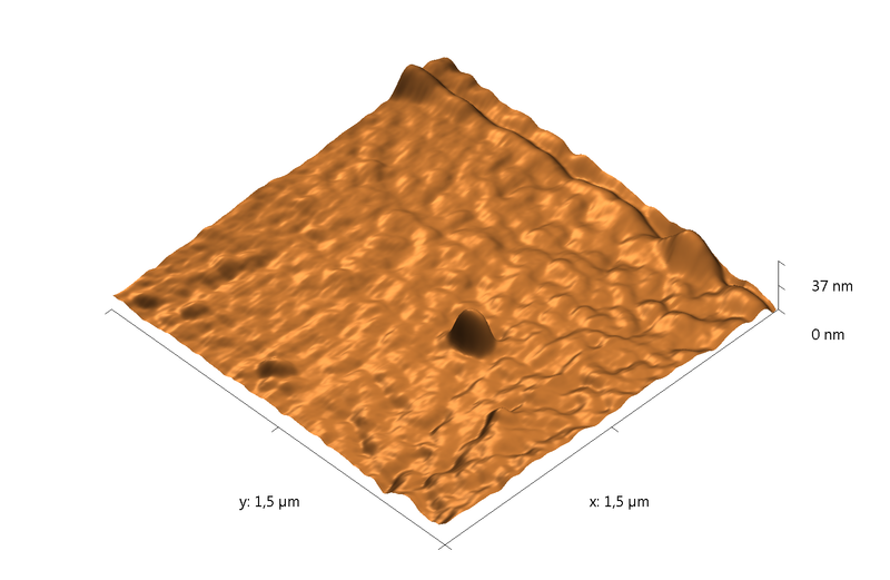 PETE film. Plasma etching - 60 min. AFM image. Simi-contact mode. Topography 3D.
