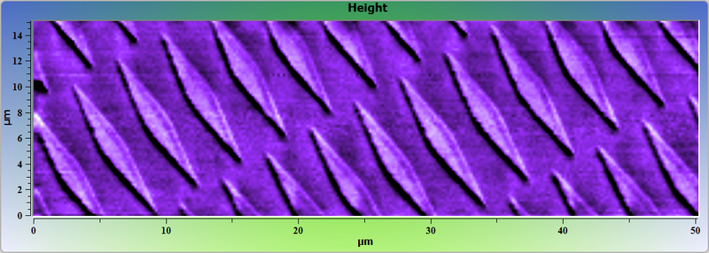 Vanadium test grating. AFM image. Topography.